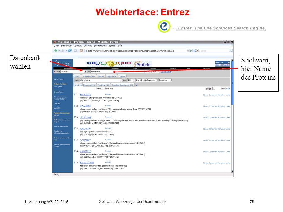 1. Vorlesung WS 2015/16 Software-Werkzeuge der Bioinformatik28 Datenbank wählen Stichwort, hier Name des Proteins Webinterface: Entrez
