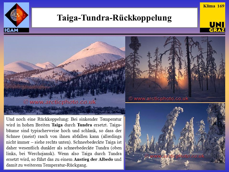 Taiga-Tundra-Rückkoppelung Klima 169 Und noch eine Rückkoppelung: Bei sinkender Temperatur wird in hohen Breiten Taiga durch Tundra ersetzt.