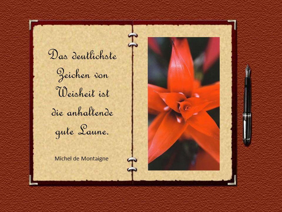Sehnsucht lässt alle Dinge blühen. Marcel Proust