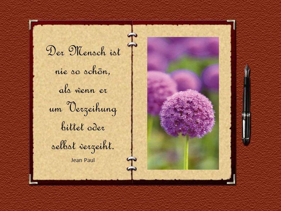 Das deutlichste Zeichen von Weisheit ist die anhaltende gute Laune. Michel de Montaigne