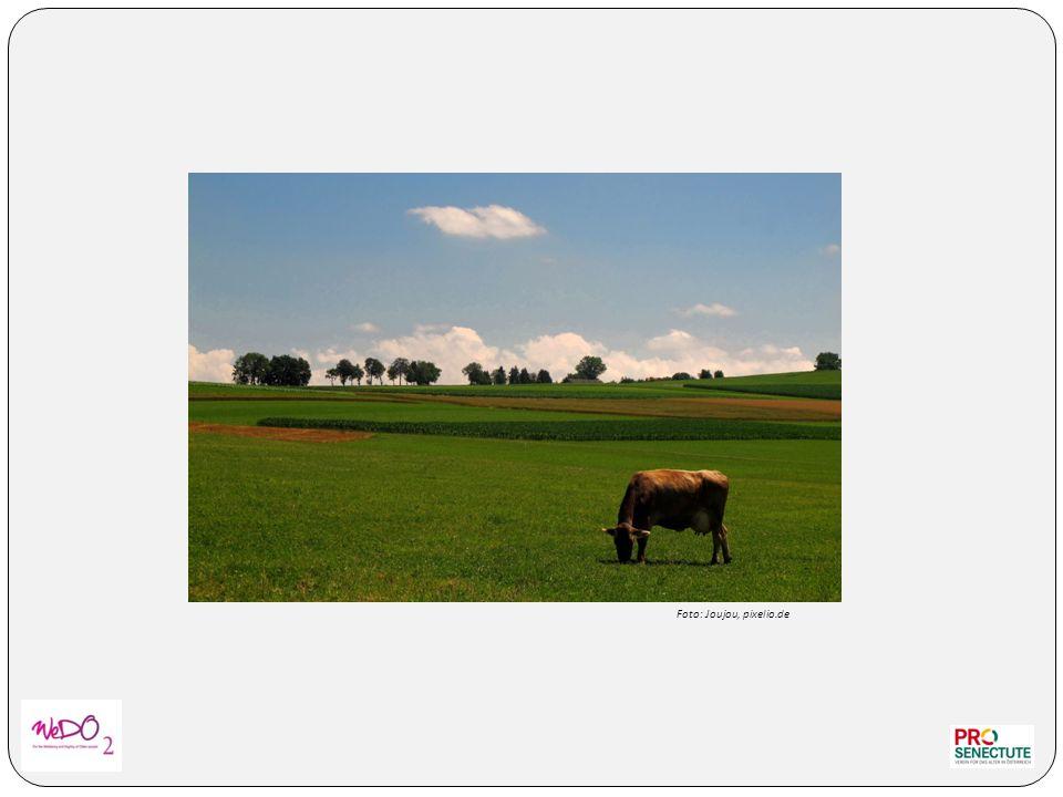Foto: Joujou, pixelio.de