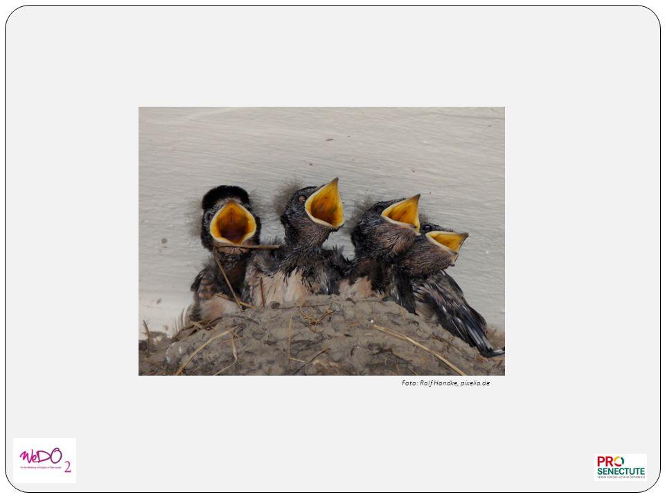Foto: Rolf Handke, pixelio.de