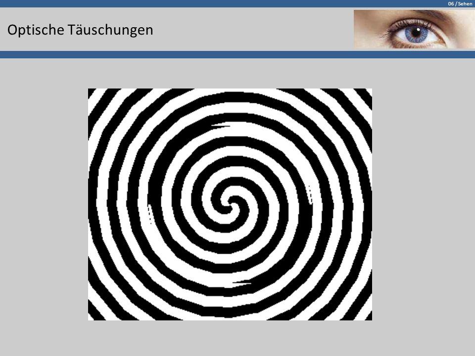 06 / Sehen Optische Täuschungen