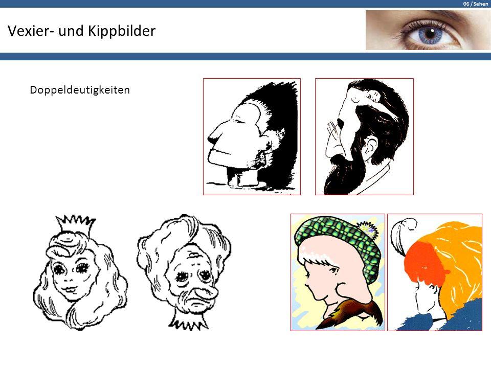 06 / Sehen Vexier- und Kippbilder Doppeldeutigkeiten