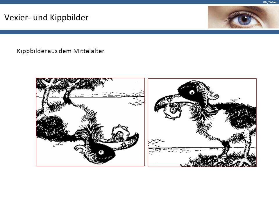 06 / Sehen Vexier- und Kippbilder Kippbilder aus dem Mittelalter