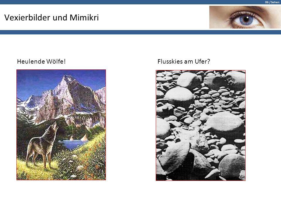 06 / Sehen Vexierbilder und Mimikri Heulende Wölfe!Flusskies am Ufer?