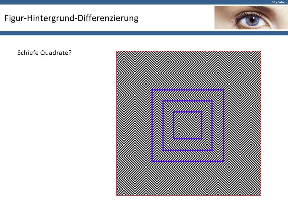 06 / Sehen Figur-Hintergrund-Differenzierung Schiefe Quadrate?