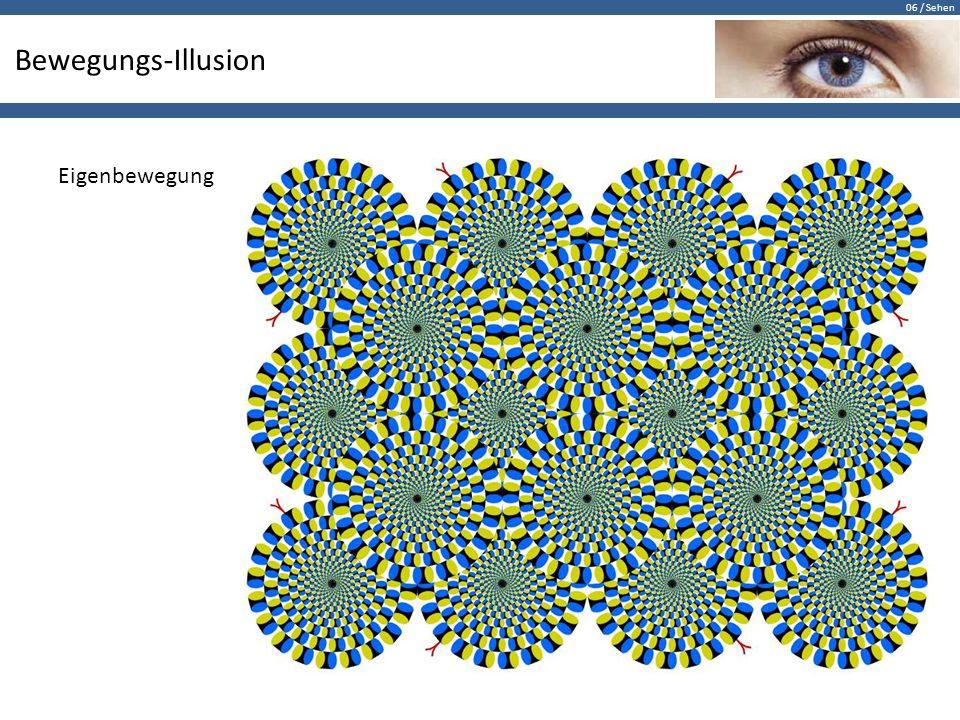 06 / Sehen Bewegungs-Illusion Eigenbewegung