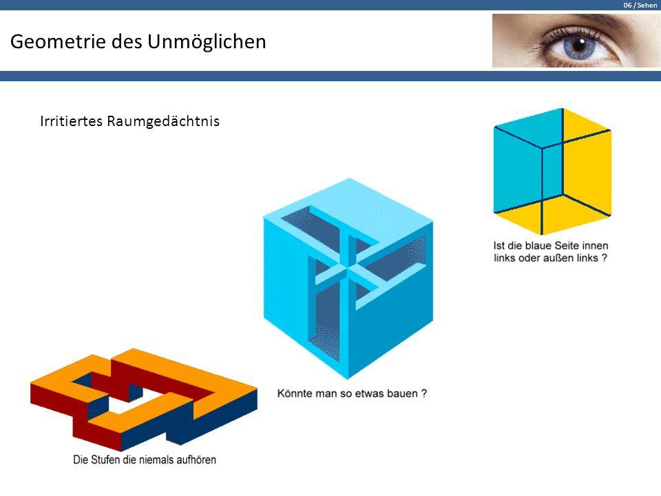 06 / Sehen Geometrie des Unmöglichen Irritiertes Raumgedächtnis