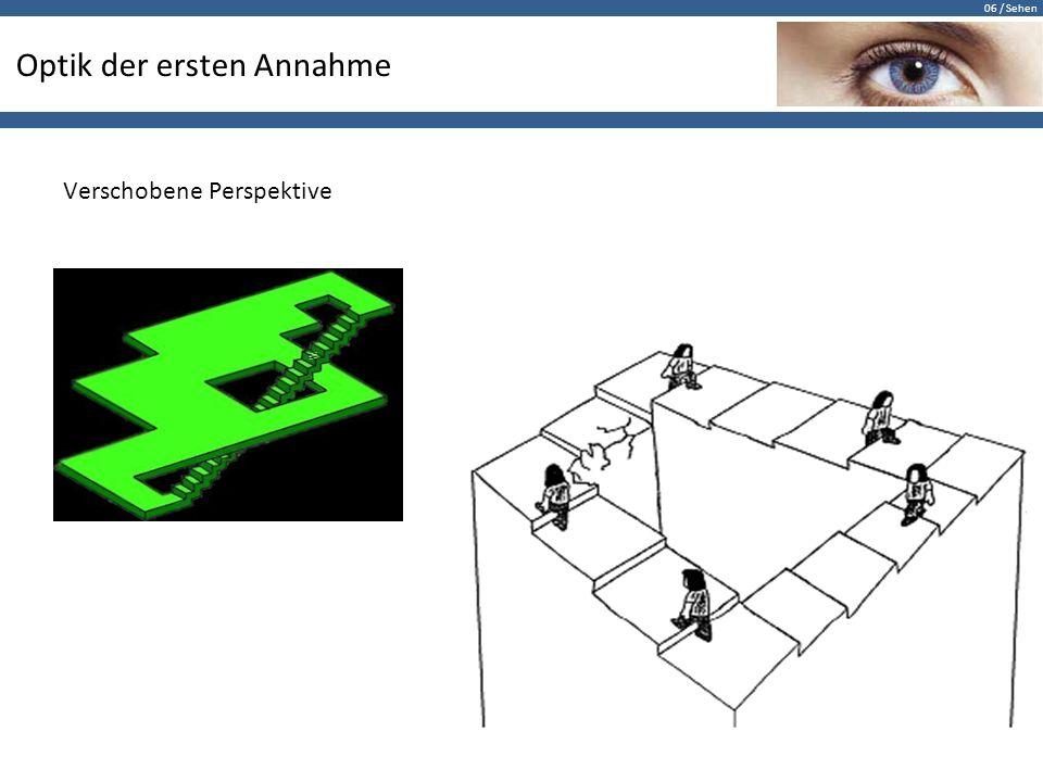 06 / Sehen Raster-Dominanz Diagonale Gerade