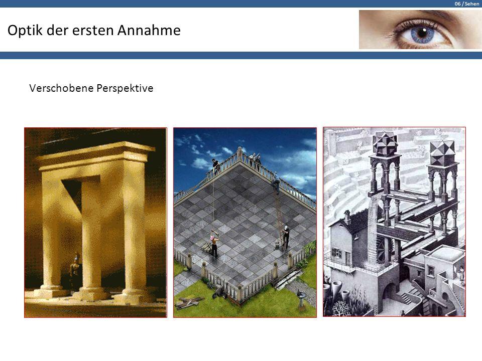 06 / Sehen Optik der ersten Annahme Verschobene Perspektive