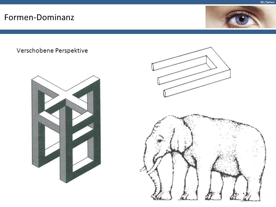 06 / Sehen Formen-Dominanz Verschobene Perspektive