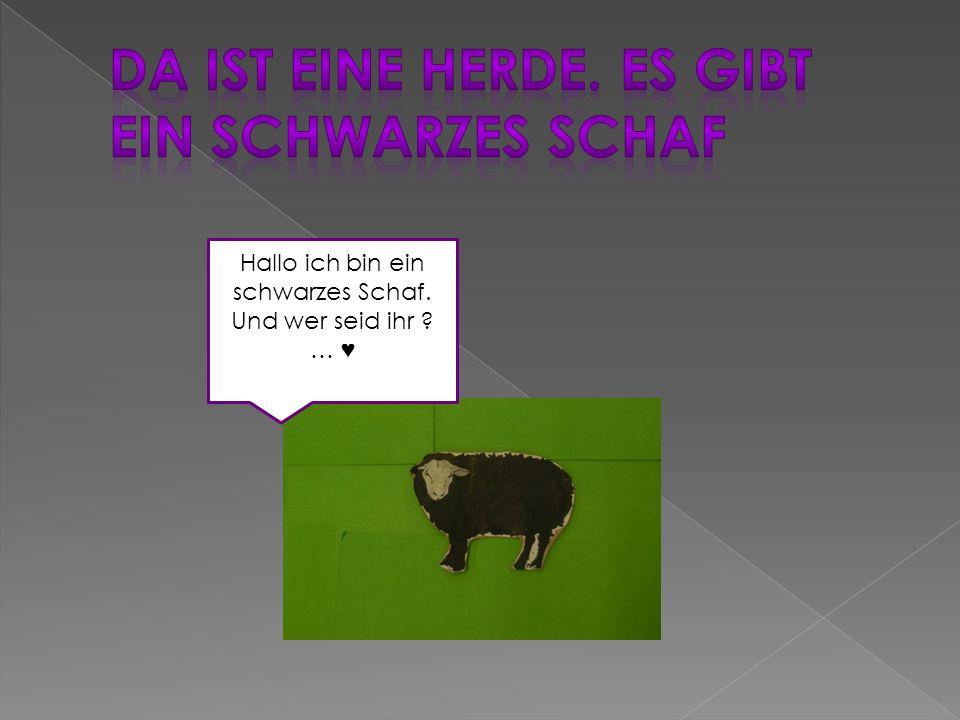 Hallo ich bin ein schwarzes Schaf. Und wer seid ihr … ♥