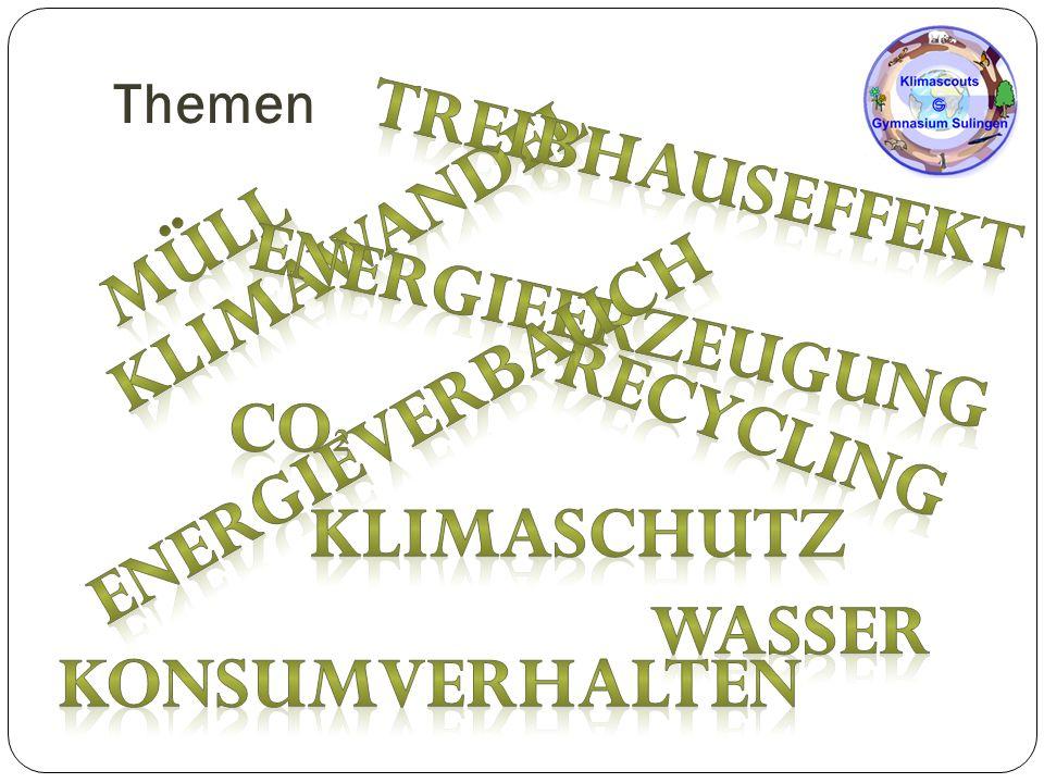 Die Klimascouts im Schuljahr 2014/2015