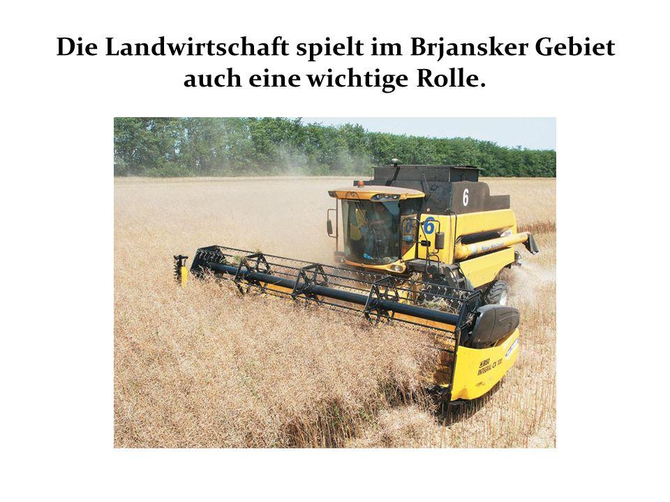 Die Landwirtschaft spielt im Brjansker Gebiet auch eine wichtige Rolle.