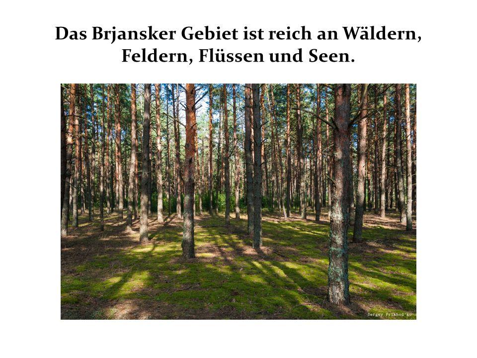 Das Brjansker Gebiet ist reich an Wäldern, Feldern, Flüssen und Seen.