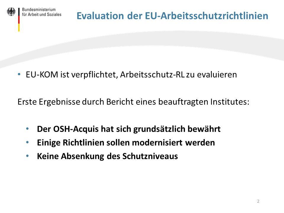 3 Evaluation der EU-Arbeitsschutzrichtlinien EU-KOM wird Bericht des Auftragnehmers als eine Grundlage für ihren Evaluationsbericht nutzen EU-KOM hat eine Mitteilung für Mitte 2016 angekündigt Das Bundesministerium für Arbeit und Soziales (BMAS) begleitet den Evaluationsprozess Grundsatz des BMAS: Keine Absenkung des Schutzniveaus