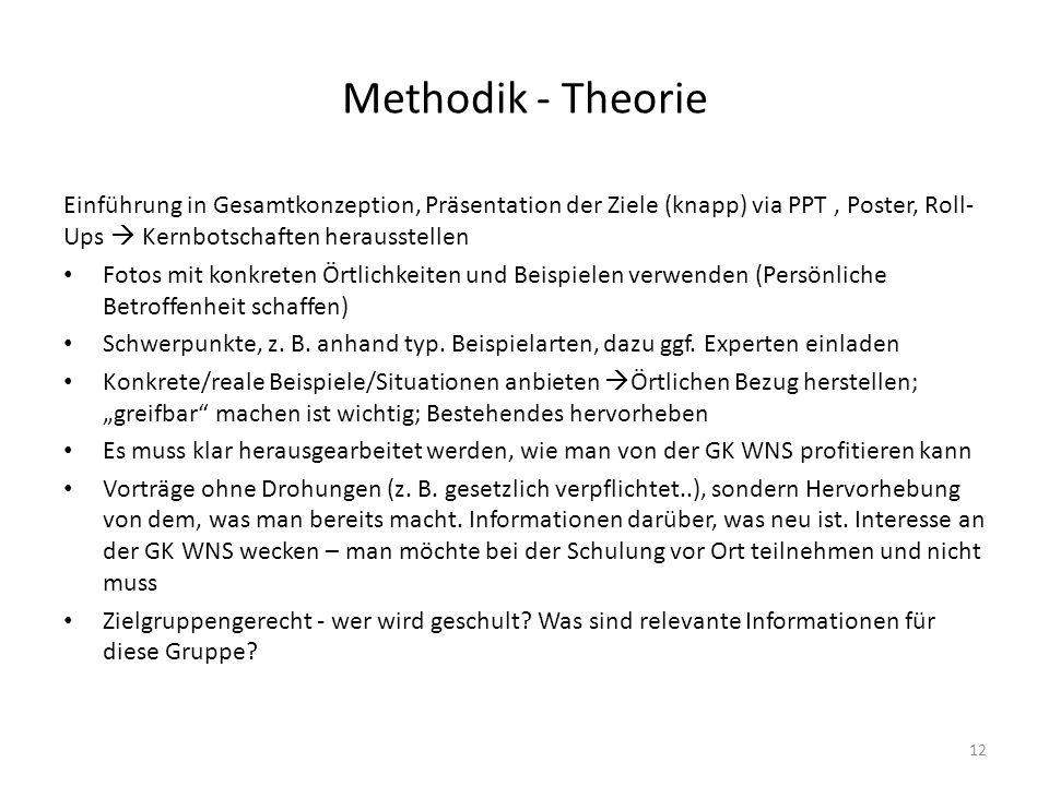 Methodik - Theorie Einführung in Gesamtkonzeption, Präsentation der Ziele (knapp) via PPT, Poster, Roll- Ups  Kernbotschaften herausstellen Fotos mit