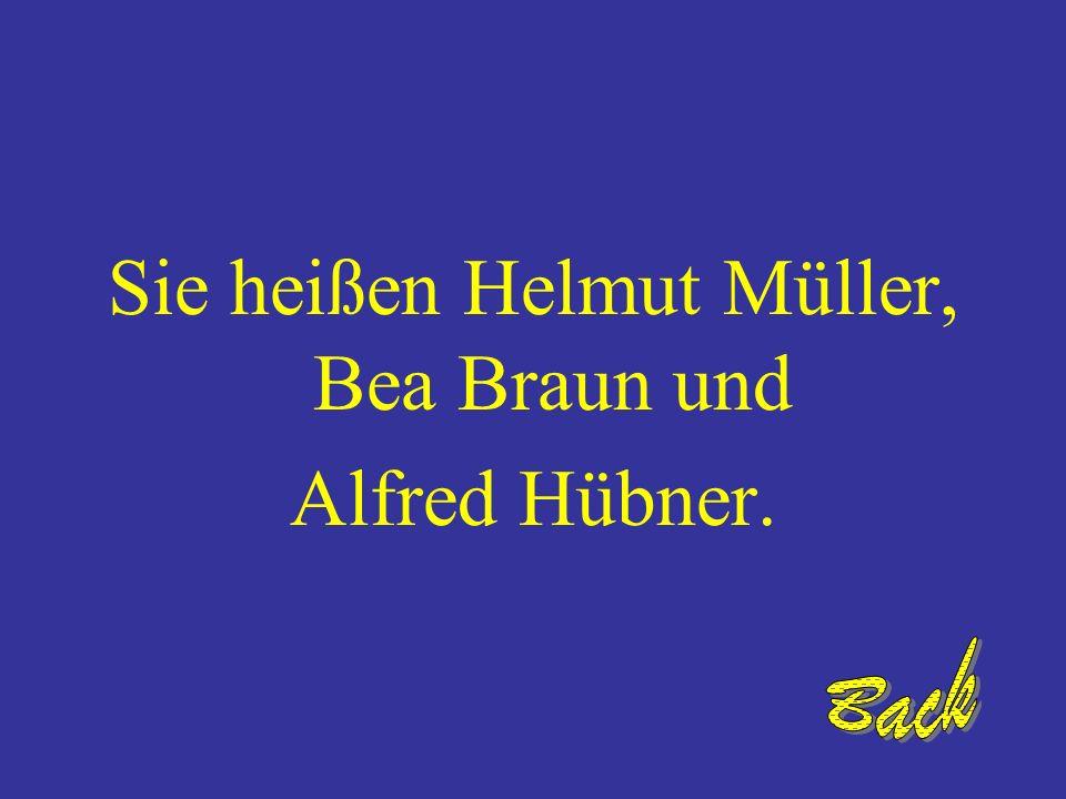Sie heißen Helmut Müller, Bea Braun und Alfred Hübner.