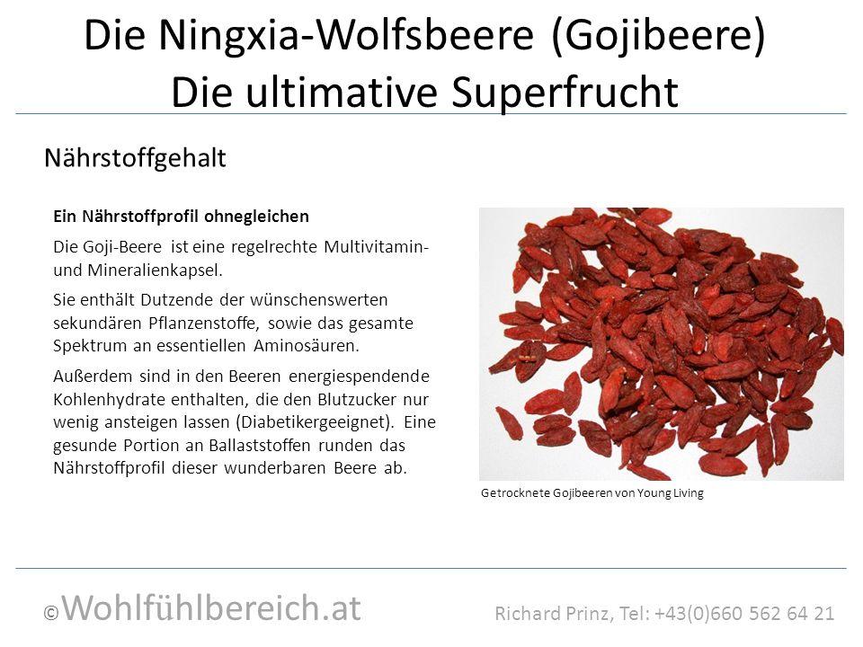 © Wohlf ü hlbereich.at Richard Prinz, Tel: +43(0)660 562 64 21 Die Ningxia-Wolfsbeere (Gojibeere) Die ultimative Superfrucht Die Goji-Beere ist eine regelrechte Multivitamin- und Mineralienkapsel.