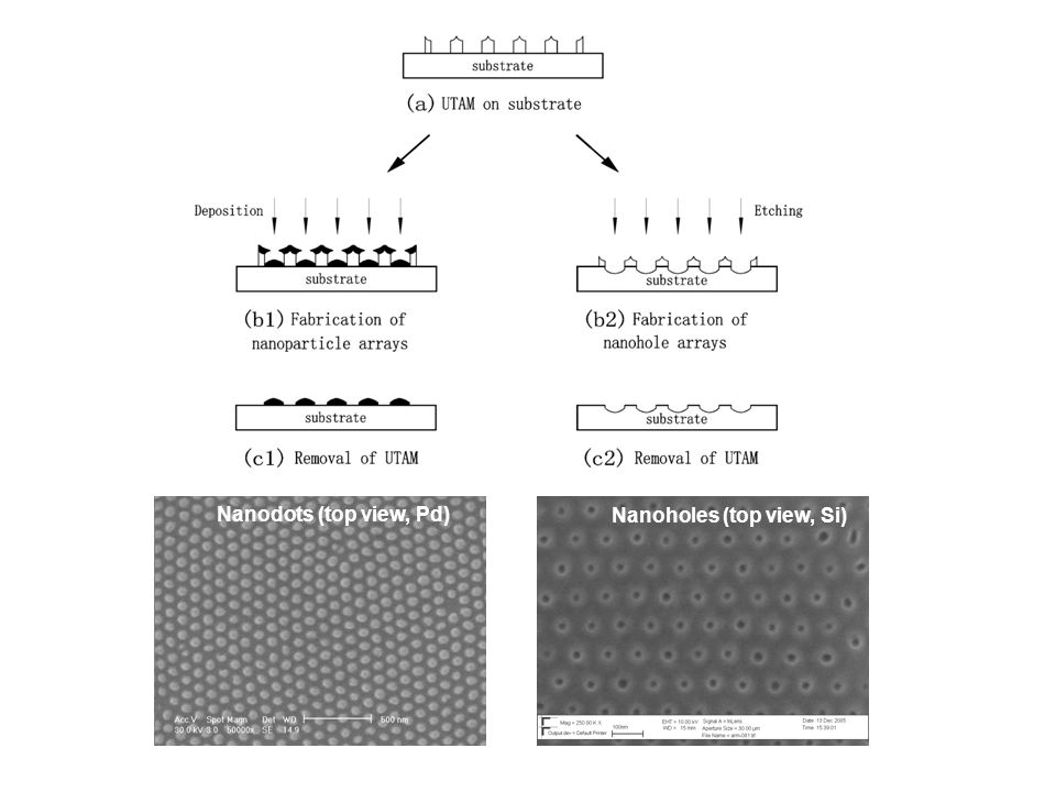Tuning of the shapes and sizes of UTAM-prepared nanostructures To control the structural parameters (shape, size and spacing) is very important Controllable sizes and shapes: The pore diameters of the UTAMs can be adjusted from about 10 to 400 nm to yield nanoparticles of corresponding size.