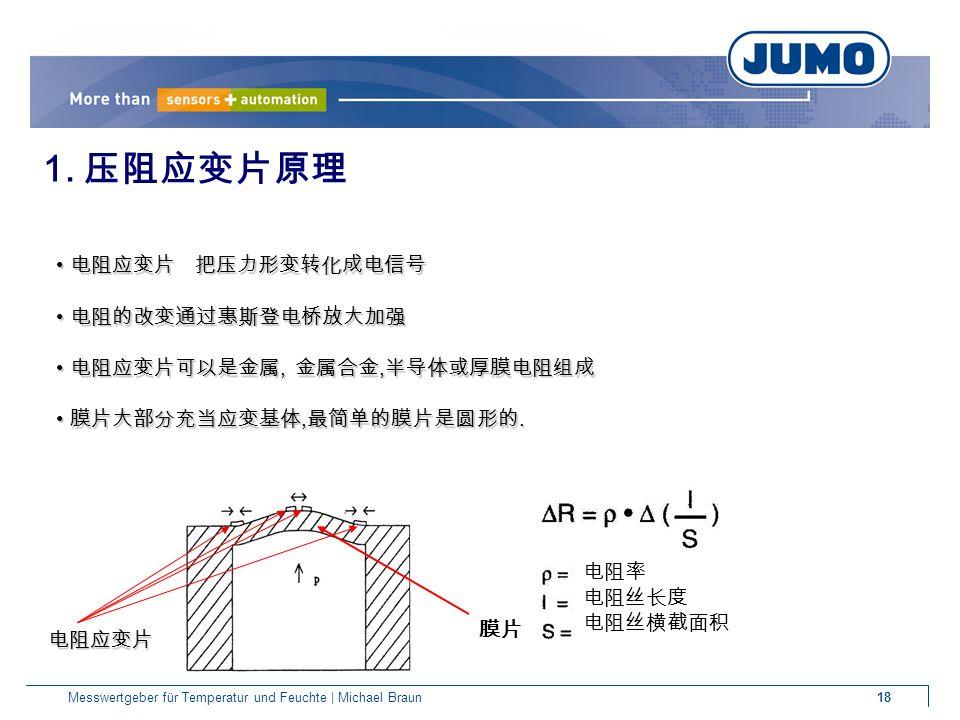 18Messwertgeber für Temperatur und Feuchte | Michael Braun 膜片 1.