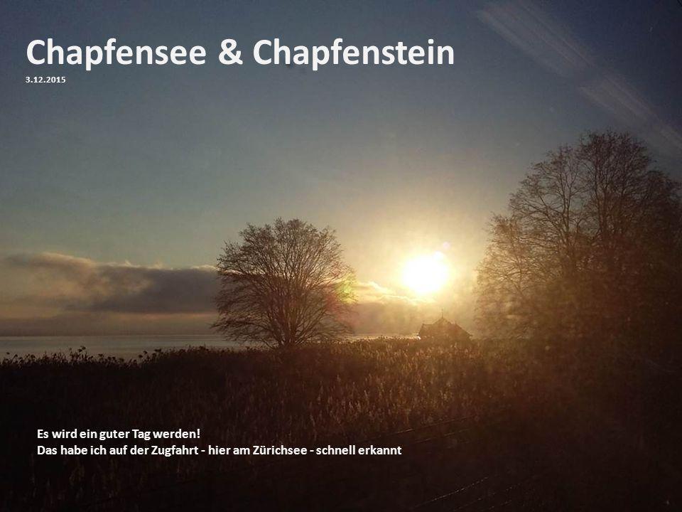 Chapfensee & Chapfenstein 3.12.2015 Es wird ein guter Tag werden! Das habe ich auf der Zugfahrt - hier am Zürichsee - schnell erkannt