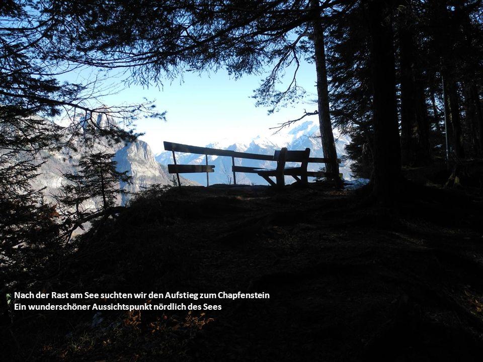 Nach der Rast am See suchten wir den Aufstieg zum Chapfenstein Ein wunderschöner Aussichtspunkt nördlich des Sees