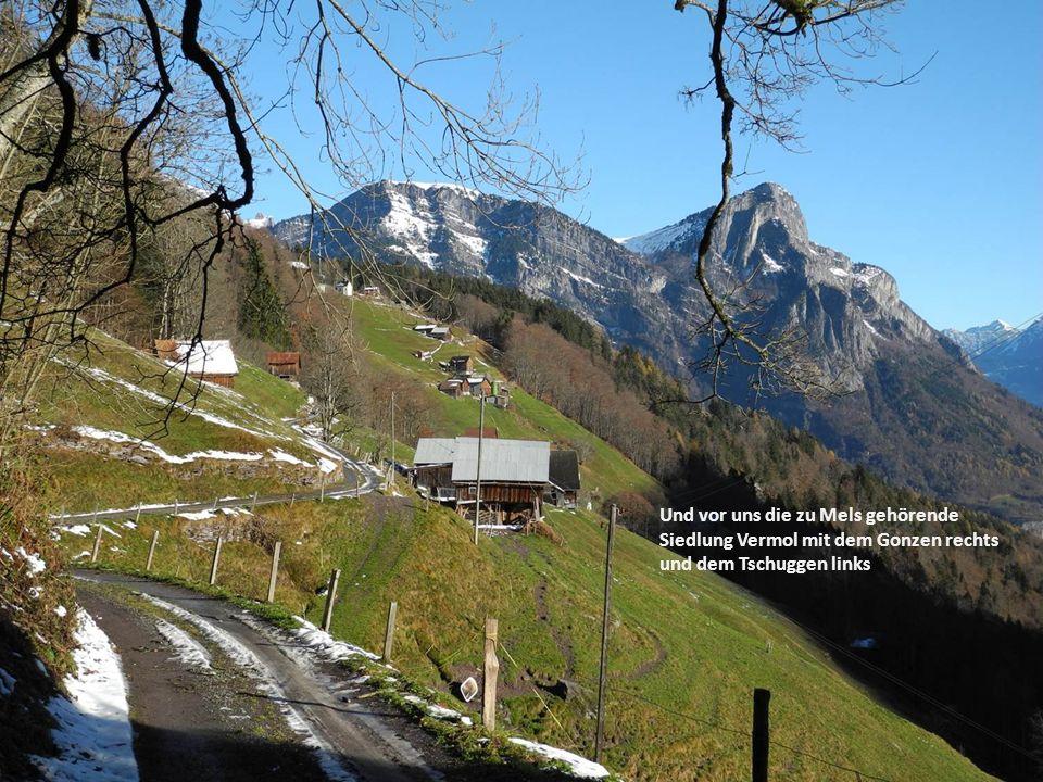 Einblick ins Rheintal