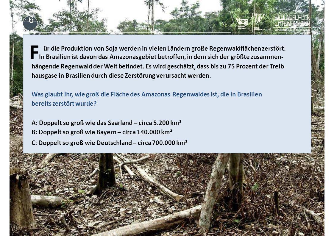 KUHFRISST REGENWALD F In Brasilien ist davon das Amazonasgebiet betroffen, in dem sich der größte zusammen- ür die Produktion von Soja werden in vielen Ländern große Regenwaldflächen zerstört.