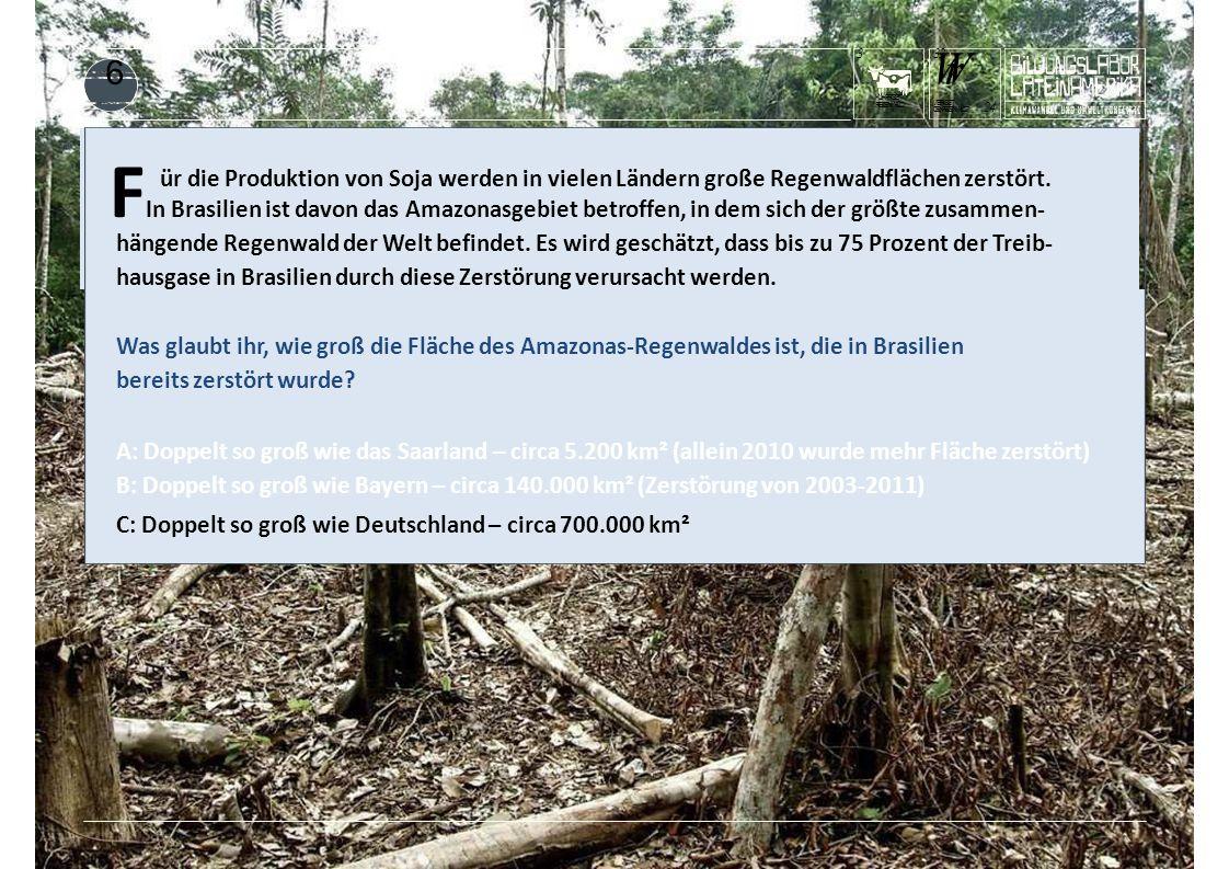 KUHFRISST REGENWALD 3 F In Brasilien ist davon das Amazonasgebiet betroffen, in dem sich der größte zusammen- ür die Produktion von Soja werden in vielen Ländern große Regenwaldflächen zerstört.