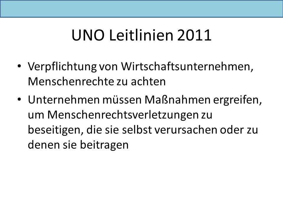 UNO Leitlinien 2011 Verpflichtung von Wirtschaftsunternehmen, Menschenrechte zu achten Unternehmen müssen Maßnahmen ergreifen, um Menschenrechtsverlet