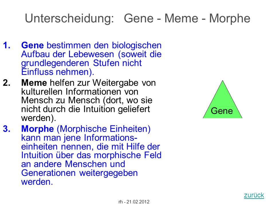 1.Gene bestimmen den biologischen Aufbau der Lebewesen (soweit die grundlegenderen Stufen nicht Einfluss nehmen). 2.Meme helfen zur Weitergabe von kul