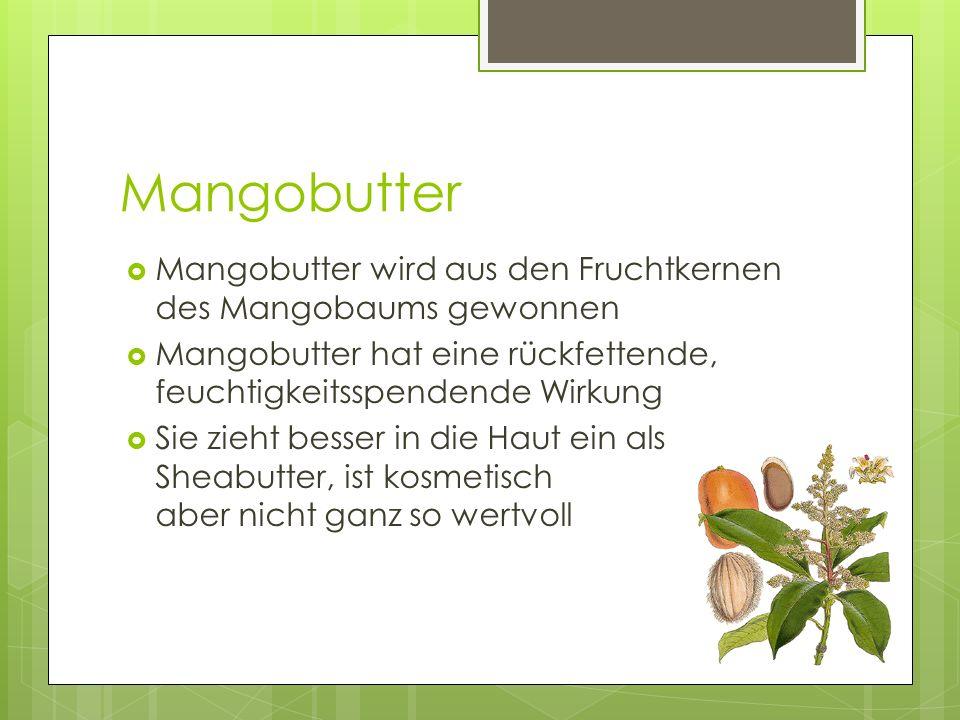 Mangobutter  Mangobutter wird aus den Fruchtkernen des Mangobaums gewonnen  Mangobutter hat eine rückfettende, feuchtigkeitsspendende Wirkung  Sie