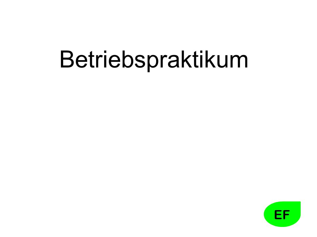 EF Betriebspraktikum