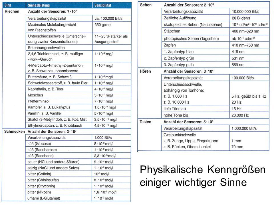 Physikalische Kenngrößen einiger wichtiger Sinne