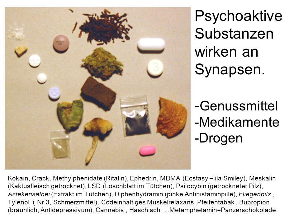 Kokain, Crack, Methylphenidate (Ritalin), Ephedrin, MDMA (Ecstasy –lila Smiley), Meskalin (Kaktusfleisch getrocknet), LSD (Löschblatt im Tütchen), Psi