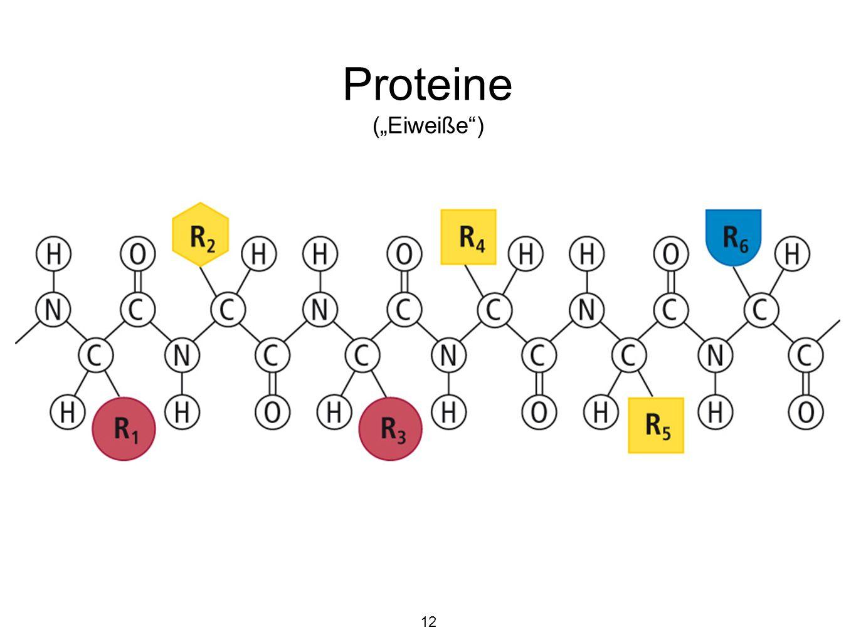"""Proteine (""""Eiweiße ) 12"""