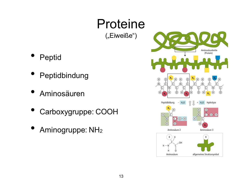 "Proteine (""Eiweiße ) Peptid Peptidbindung Aminosäuren Carboxygruppe: COOH Aminogruppe: NH 2 13"