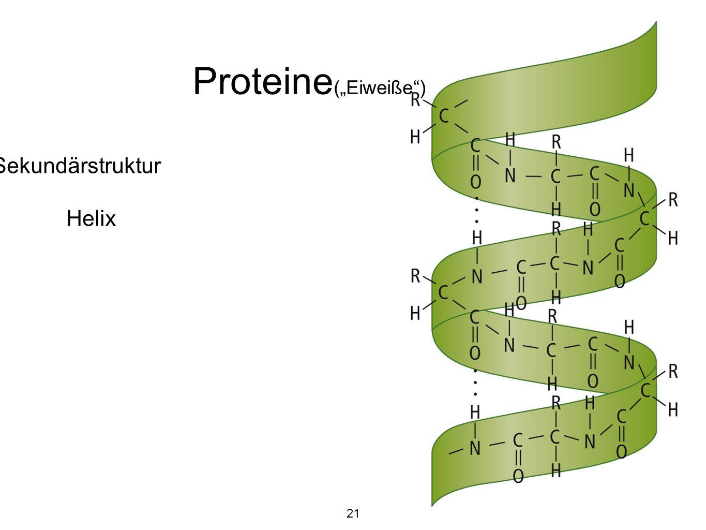 """Proteine (""""Eiweiße ) Sekundärstruktur Helix 21"""