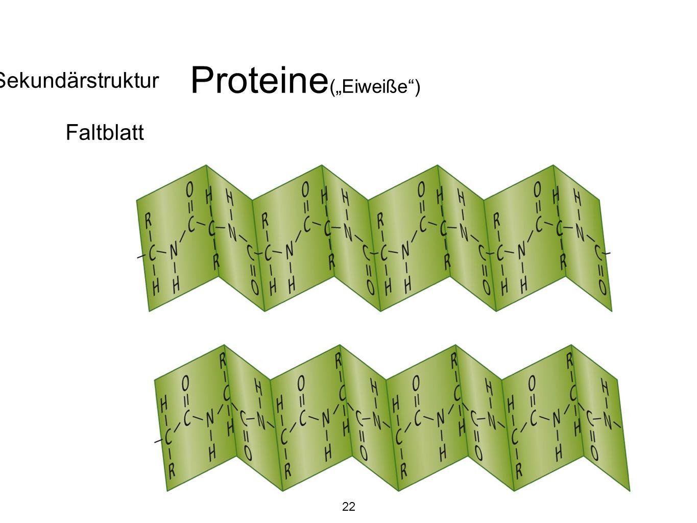 """Proteine (""""Eiweiße ) Sekundärstruktur Faltblatt 22"""