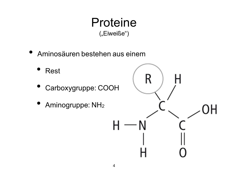 Aminosäuren bestehen aus einem Rest Carboxygruppe: COOH Aminogruppe: NH 2 4