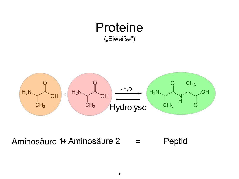 """Proteine (""""Eiweiße ) Primärstruktur = Aminosäuresequenz 22 proteinogene Aminosäuren, aber 250 nicht-proteinogene Aminosäuren mit biologischer Funktion bei 100 Aminosäuren in der Sequenz 20 100 = 10 130 Möglichkeiten Atome im Universum """"nur 10 71 20"""