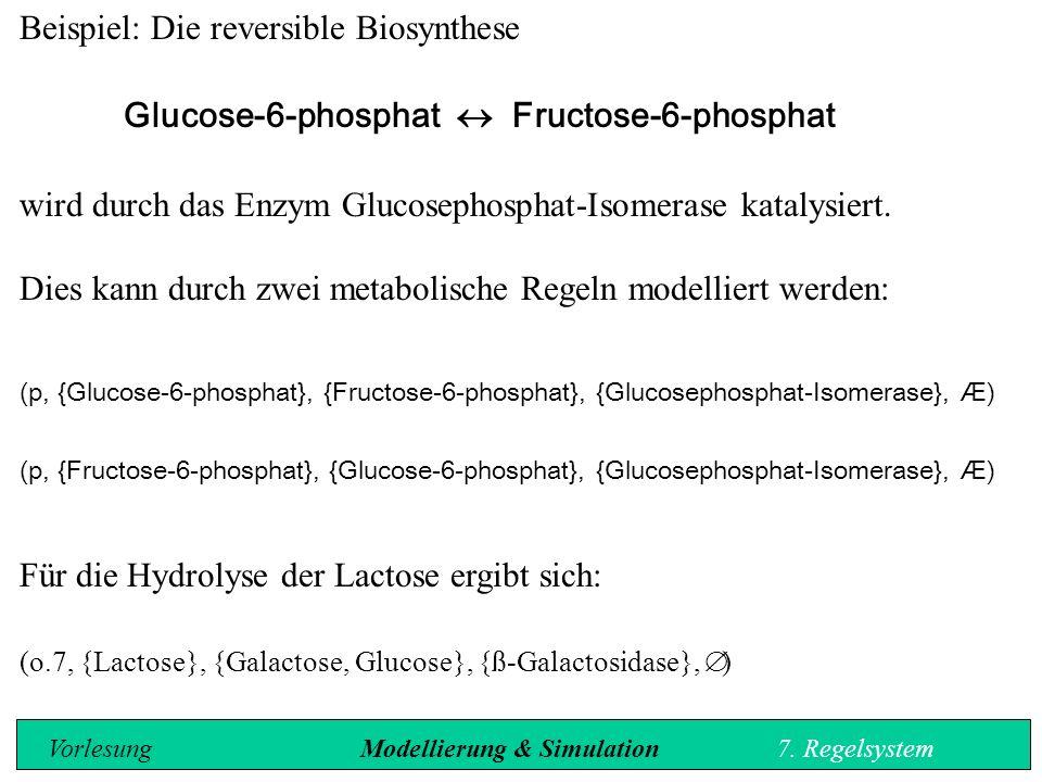 Beispiel: Die reversible Biosynthese Glucose-6-phosphat  Fructose-6-phosphat wird durch das Enzym Glucosephosphat-Isomerase katalysiert.