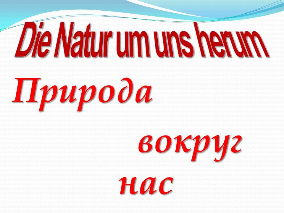 Природа вокруг нас вокруг нас