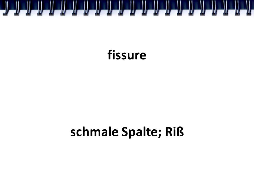 fissure schmale Spalte; Riß