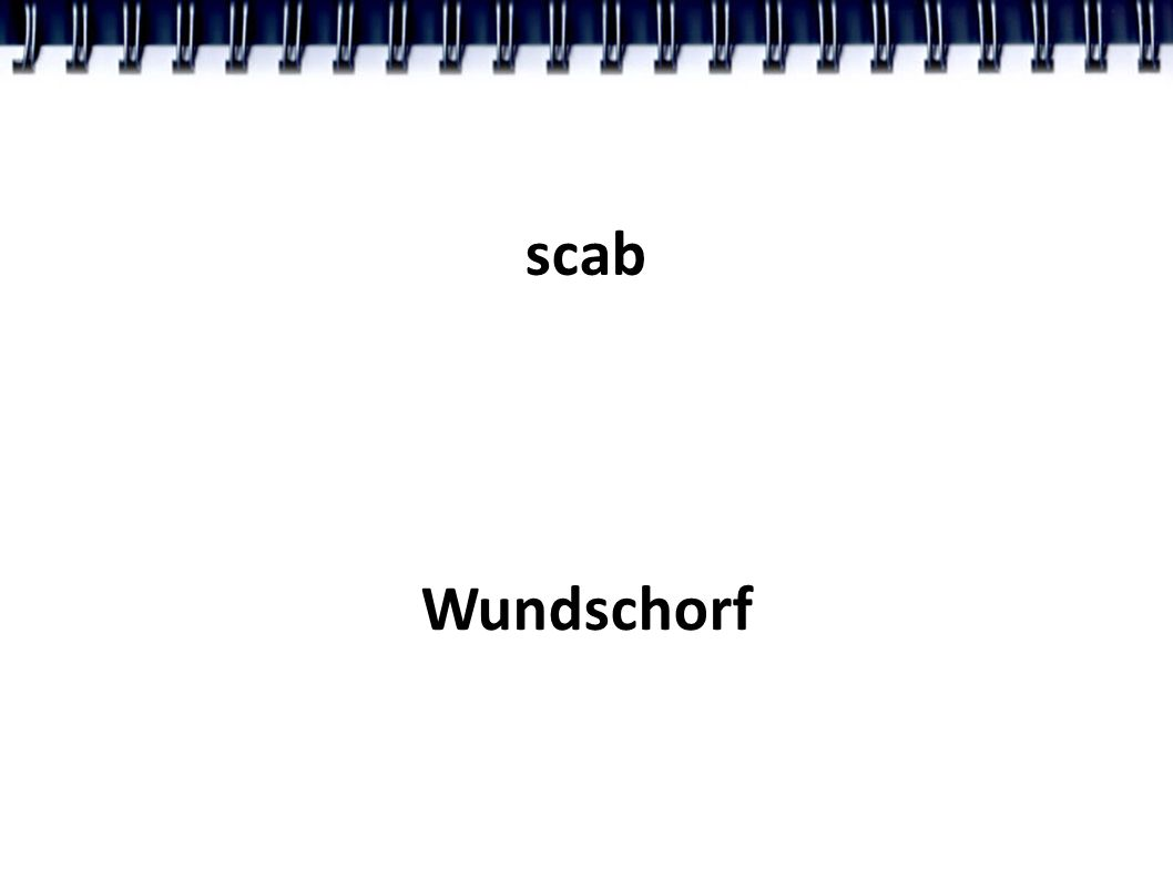 scab Wundschorf