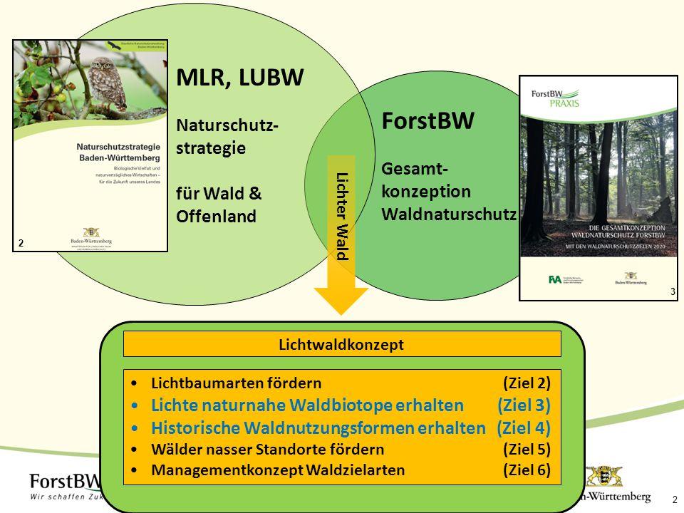 2 ForstBW Gesamt- konzeption Waldnaturschutz MLR, LUBW Naturschutz- strategie für Wald & Offenland Lichtbaumarten fördern (Ziel 2) Lichte naturnahe Waldbiotope erhalten (Ziel 3) Historische Waldnutzungsformen erhalten (Ziel 4) Wälder nasser Standorte fördern (Ziel 5) Managementkonzept Waldzielarten (Ziel 6) Lichtwaldkonzept Lichter Wald 2 3