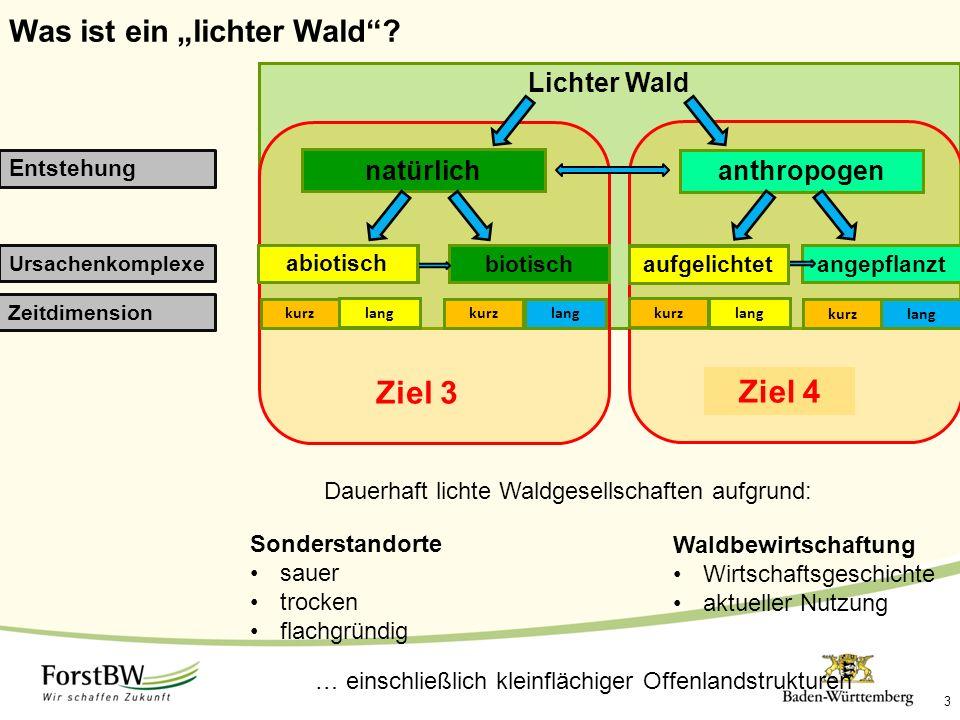 """Was ist ein """"lichter Wald""""? Lichter Wald Entstehung Ursachenkomplexe 3 Zeitdimension Ziel 3Ziel 4 natürlich abiotischbiotisch kurz lang kurzlang anthr"""