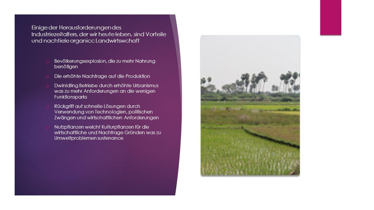 Landwirtschaft organische Art und Weise eine allumfassende System der Produktionsmethoden im Hinblick auf die  allgemeine Verbesserung der Qualität des menschlichen Lebens  ökonomisch sinnvolle Operationen  Verbesserung der Umweltqualität  Erhaltung der natürlichen Ressourcen  Nutzung und integreting nicht erneuerbaren und anderen Ressourcen in einem integrierten und effektiven Weg, ohne zu stören biologische Gleichgewicht